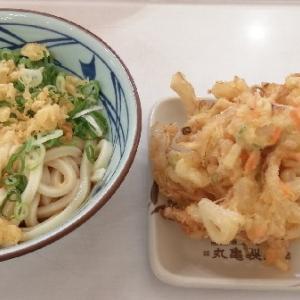 丸亀製麺 ぶっかけうどんランチ!【トリドールホールディングス株主優待】