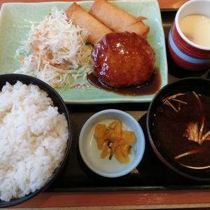 和食さとで初めての家族ランチ♪キャンペーン中でお得だった!