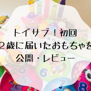 [高額玩具をお試し]初回トイサブ2歳女の子に届いたおもちゃを公開