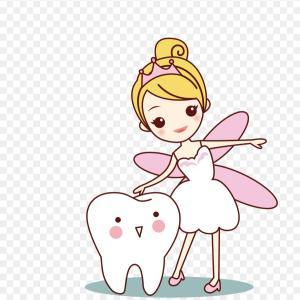 アメリカでは歯が抜けたらお金がもらえる?!歯の妖精トゥースフェアリー♪