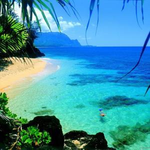 ハワイへ行きたい♡ザ・スクエア