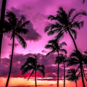 ハワイヘ行きたい♡夏マスク
