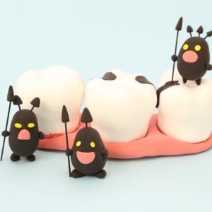歯の健康を考える