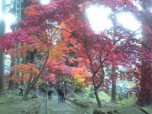 清水寺(せいすいじ)