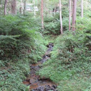 長野県信濃町に行ってきました!