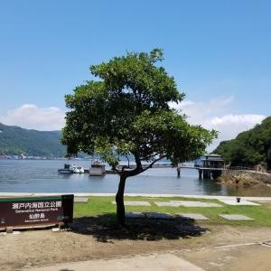【島がパワースポット】鞆の浦の外せない観光名所・仙酔島を歩く!