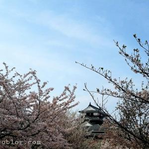 松山市内観光2泊3日モデルコース【女子旅をもっと楽しく】