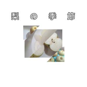 佐野市 フルーツライン 梨の季節