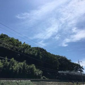 山口県山口市 「道の駅長門峡」 川遊び♪ 走るSL見れます!