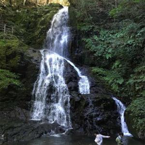 山口県美祢市 白糸の滝 大迫力の滝! 大自然のパワースポット♪