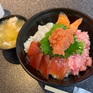 イカ釣りを求めて福井県へ