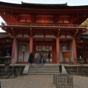 奈良に来てますが、、