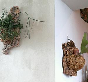 部屋の印象をガラリと変えるオシャレな壁の使い方 | ROOMHOLIC|神奈川の整理収納アドバイザー藤井ともみ
