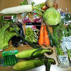 野菜販売のドライブスルーを初利用