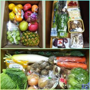 野菜のドライブスルー販売 10月分