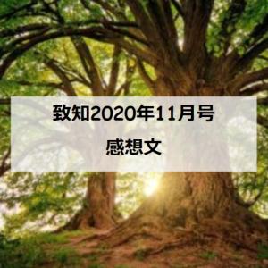 【致知】2020年11月号「根を養う」を読んだ感想