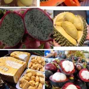 おススメカンボジア果物種類、大人気なフルーツ紹介