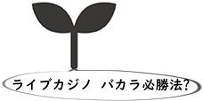 ライブカジノ バカラ 必勝法