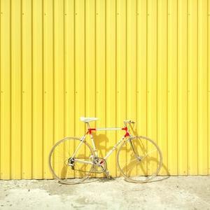 【趣味】サイクリングはコスパ最強の趣味だと思います