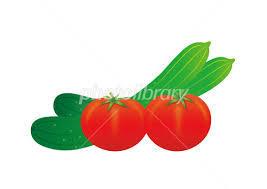 キュウリとトマト。。。