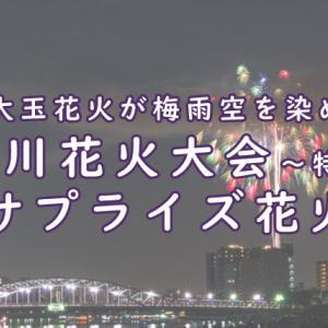 隅田川花火大会~特別編~でサプライズ花火 大玉花火が梅雨空を染め上げる