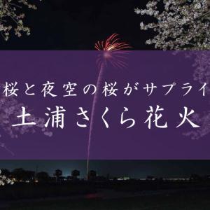 茨城・土浦でさくら花火開催!地上と夜空の桜が華麗にコラボする