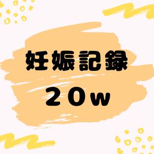 妊娠日記ブログ【20w2d】性別判明!家族全員の予想通り…
