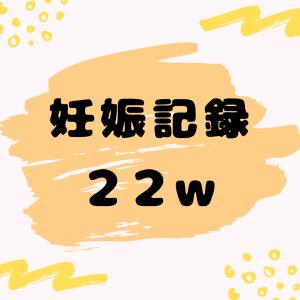妊娠日記ブログ【22w】大きな壁を越えた…!!