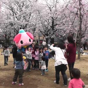 2021埼玉県の桜はいつから!?コロナ影響で花見は中止!?自粛!?一応駐車場情報も