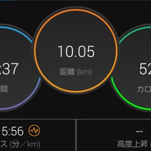 屋内ジョグ 10km。
