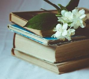 雨の日の読書とパン生地の仕込みの時間。