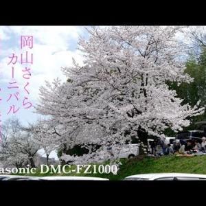 2020岡山さくらカーニバル日程と駐車場情報
