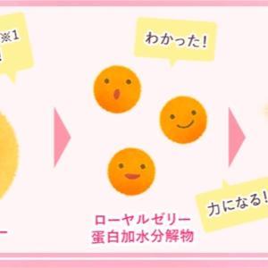初回9円★バストのお悩み解消サプリ【ロイヤルハニーアップ】