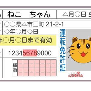 運転免許証のデジタル化、菅義偉首相から強い指示