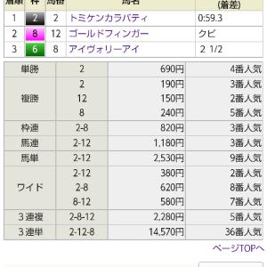 【予想結果振り返り】2021/7/25 新潟・函館【ぼちぼち】