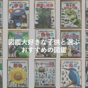 【子供用図鑑おすすめ10選】19冊読んだ3歳児と選ぶ大人も楽しい図鑑