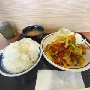 夏野菜の旨味にスパイスの香り非常にマッチしている!西日本限定の高速道路グルメ!