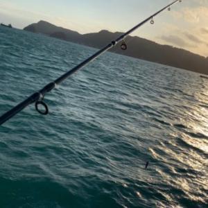 【釣り禁止2020/08/8~】大瀬崎は釣り禁止となりました