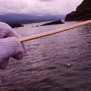 【夏休み】簡単仕掛けで水中フィッシング!
