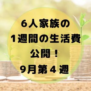 【6人家族】1週間の生活費公開(9月4週目)