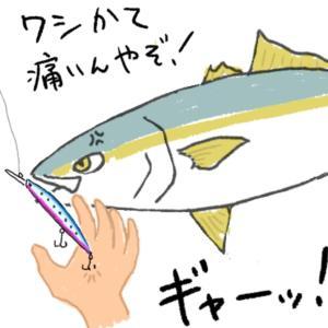 色々釣れる!秋の和田新波止(2)