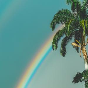 ロマンがある虹|虹とは?虹は太陽など条件がそろってでてくるもの