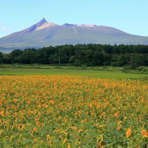 北海道の秋冬の天気〜地域別の特徴とは?|北海道の秋冬の天気とは?