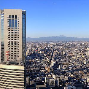 東京最高層47階のプールも再開、パークハイアット東京のデラックスルームに滞在