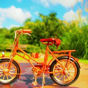 【日常のこと】もうすぐ卒園、自転車お迎えでの会話