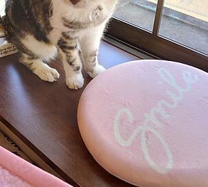 ピンクのクッション・・・