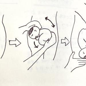 【妊娠・出産レポ1】12月出産予定のはずが11月に予定帝王切開になった話