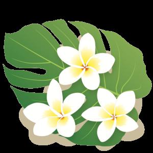 フラダンス ~ ハワイアンミュージック ♫ で、笑顔に!