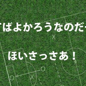 ニュージーランドにPK戦で勝利!ほいさっさあ!ほいサッカー!