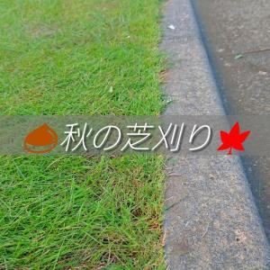秋の芝刈りとクラピアの生命力
